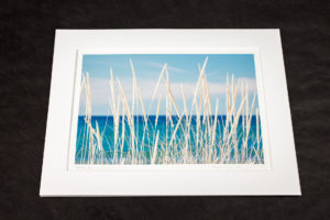 Matted Prints on Fine Art Paper